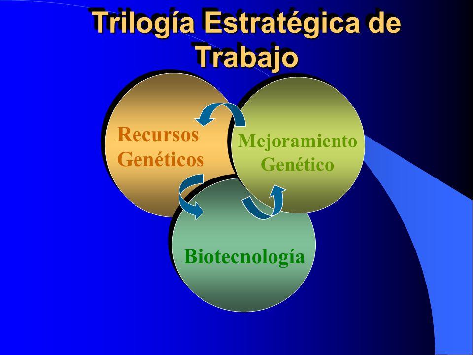Recursos Genéticos Biotecnología Mejoramiento Genético Trilogía Estratégica de Trabajo