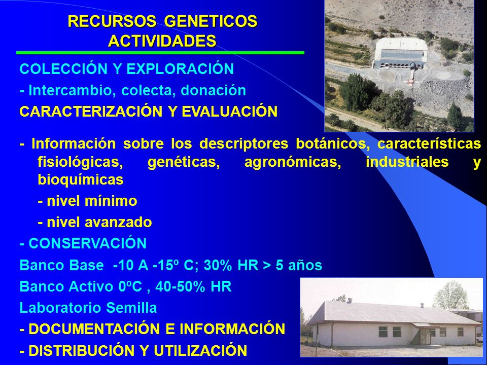 COLECCIÓN Y EXPLORACIÓN - Intercambio, colecta, donación CARACTERIZACIÓN Y EVALUACIÓN - Información sobre los descriptores botánicos, características