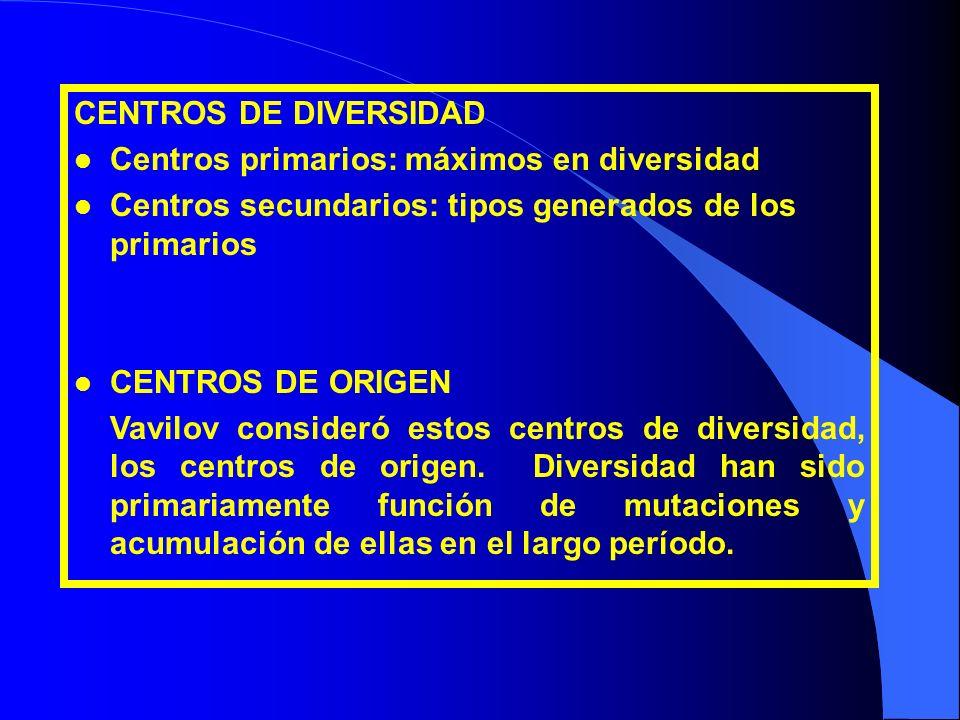 CENTROS DE DIVERSIDAD l Centros primarios: máximos en diversidad l Centros secundarios: tipos generados de los primarios l CENTROS DE ORIGEN Vavilov c