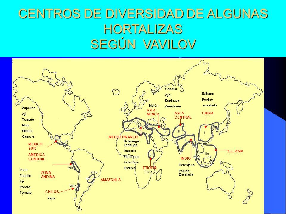CENTROS DE DIVERSIDAD DE ALGUNAS HORTALIZAS SEGÚN VAVILOV CHINA INDIO S.E. ASIA ASI A CENTRAL ASI A MENOR MEDITERRANEO ETIOPIA MEXICO SUR AMERICA CENT
