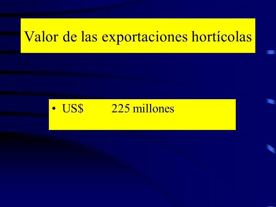 Valor de las exportaciones hortícolas US$ 225 millones