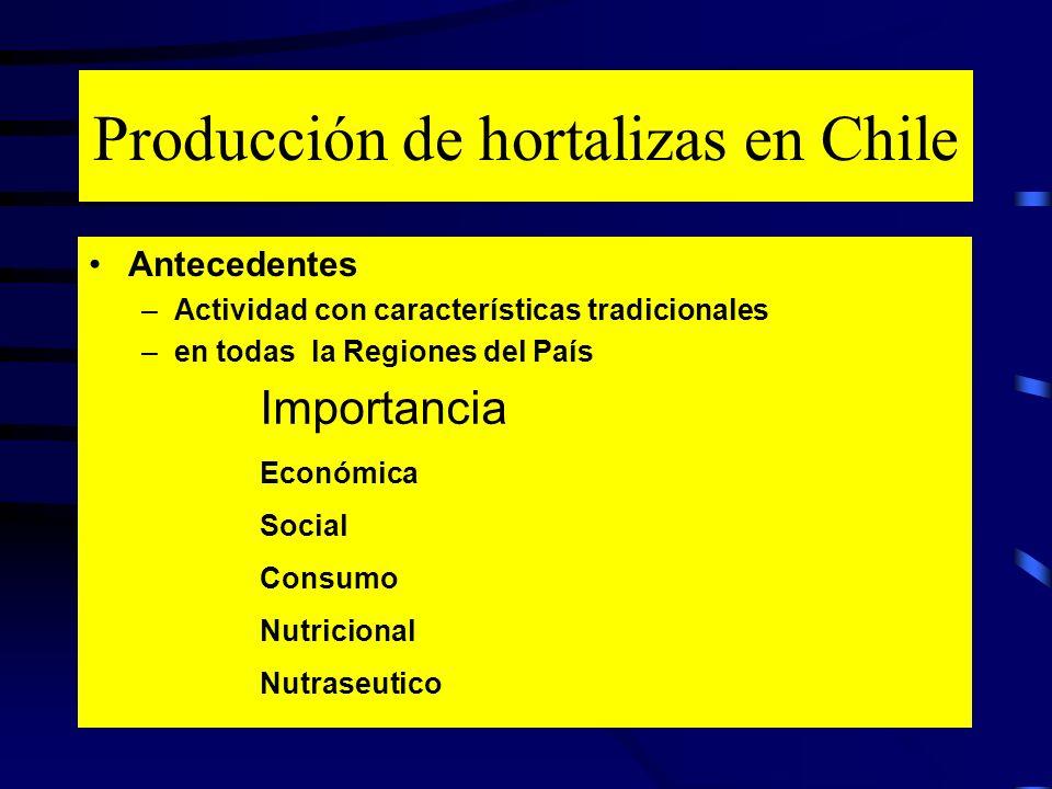 Producción de hortalizas en Chile Antecedentes –Actividad con características tradicionales –en todas la Regiones del País Importancia Económica Socia