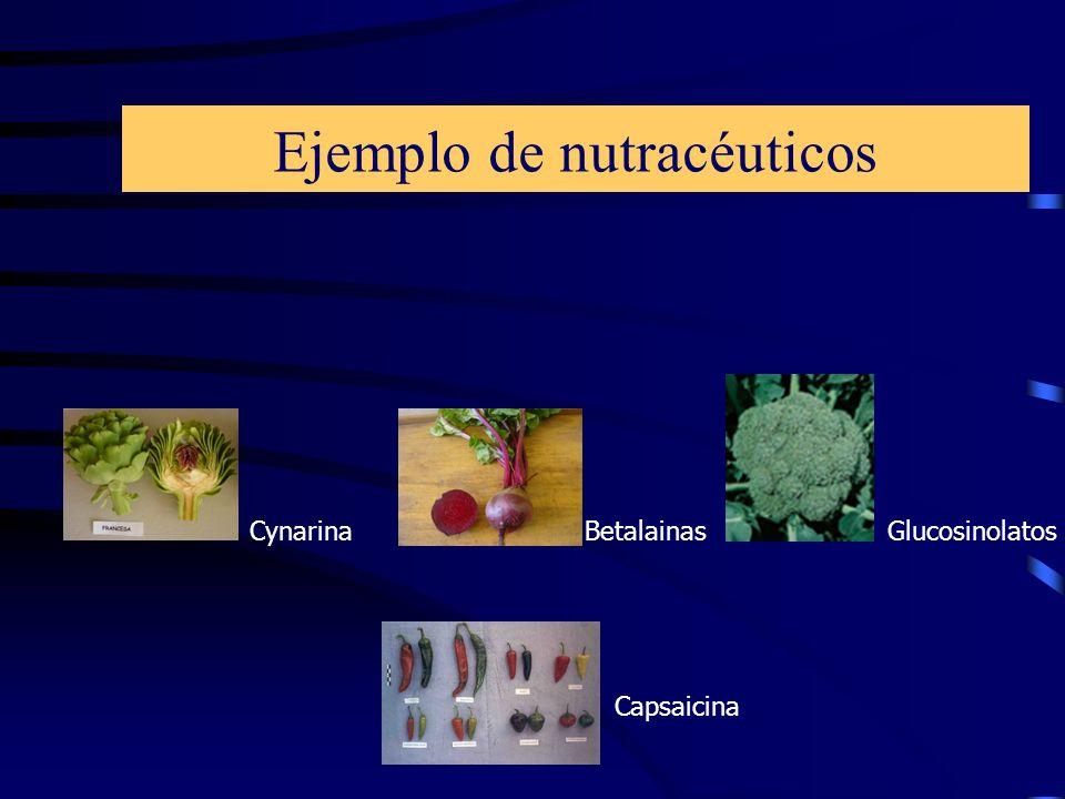 Ejemplo de nutracéuticos CynarinaGlucosinolatos Capsaicina Betalainas