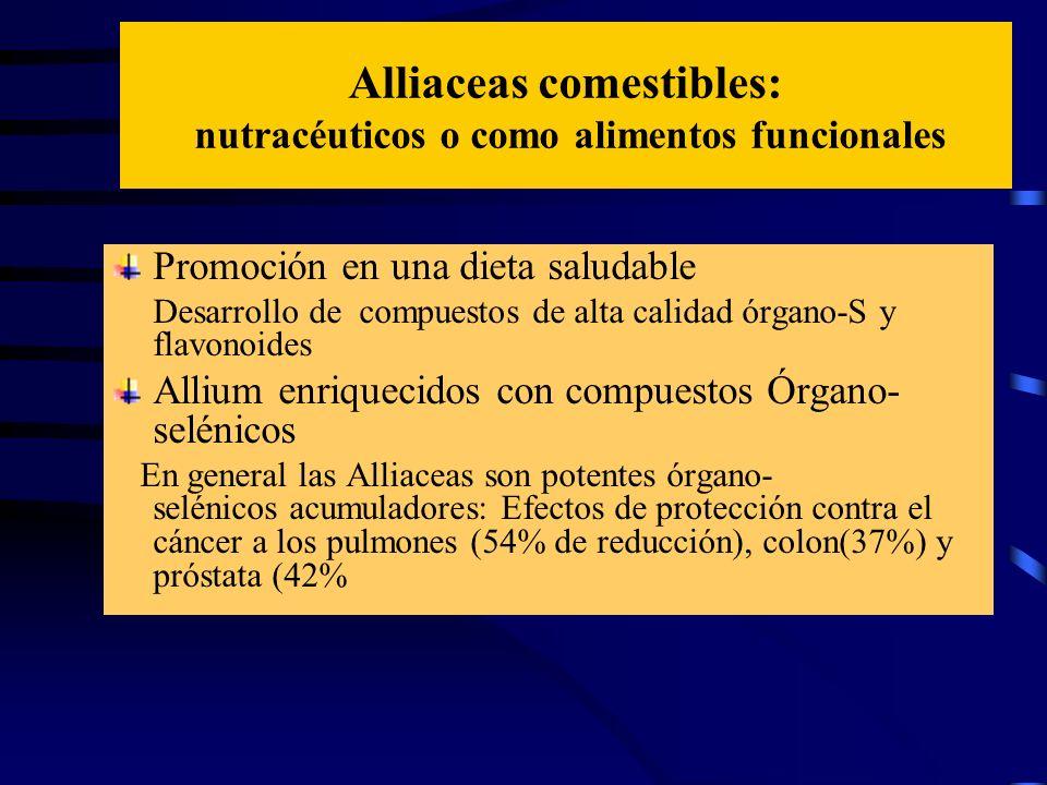 Alliaceas comestibles: nutracéuticos o como alimentos funcionales Promoción en una dieta saludable Desarrollo de compuestos de alta calidad órgano-S y