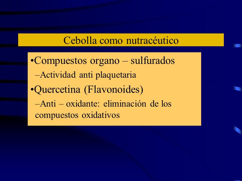 Cebolla como nutracéutico Compuestos organo – sulfurados –Actividad anti plaquetaria Quercetina (Flavonoides) –Anti – oxidante: eliminación de los com