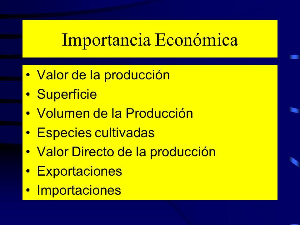 Importancia Económica Valor de la producción Superficie Volumen de la Producción Especies cultivadas Valor Directo de la producción Exportaciones Impo