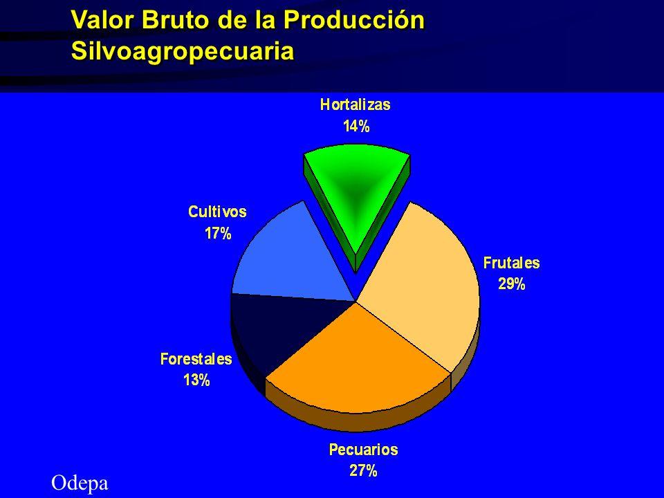 Valor Bruto de la Producción Silvoagropecuaria Odepa
