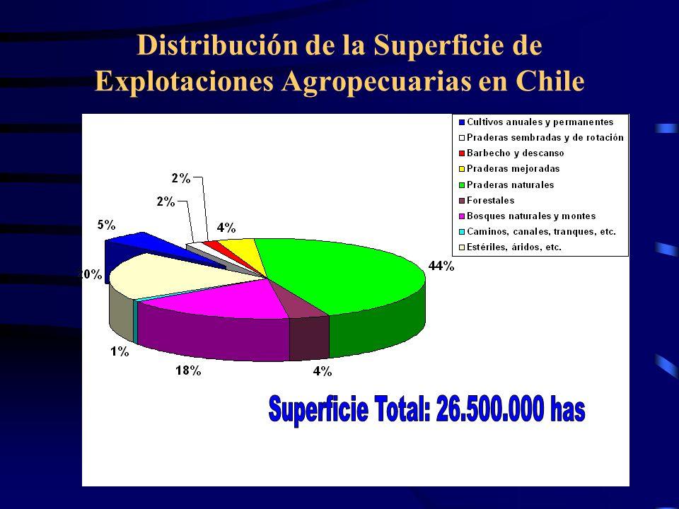 Distribución de la Superficie de Explotaciones Agropecuarias en Chile 1.000.000 has regadas