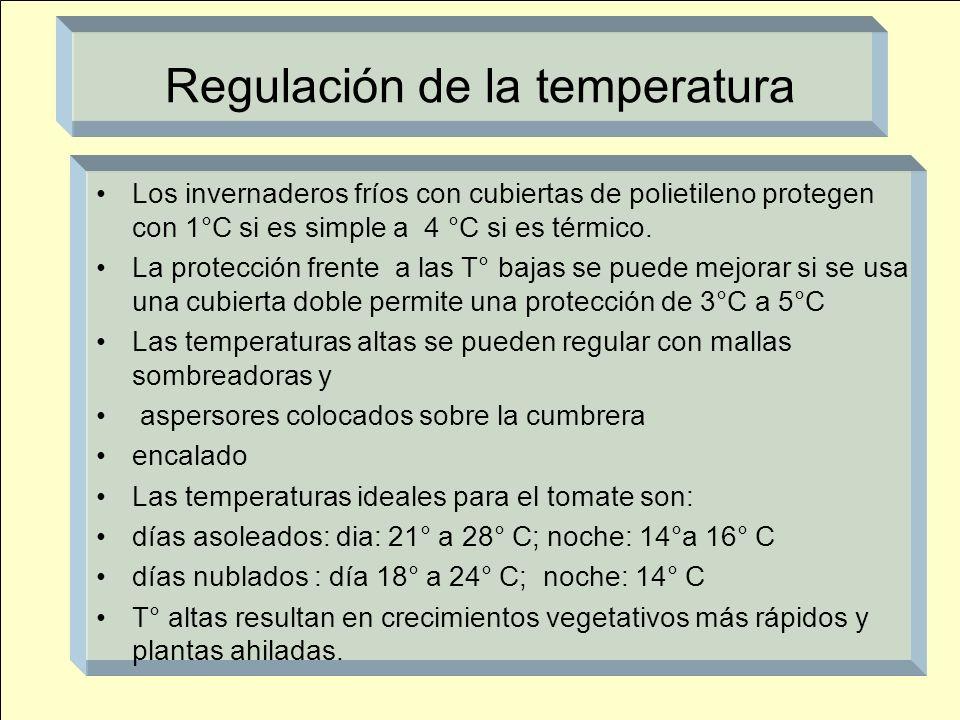 Regulación de la temperatura Los invernaderos fríos con cubiertas de polietileno protegen con 1°C si es simple a 4 °C si es térmico. La protección fre