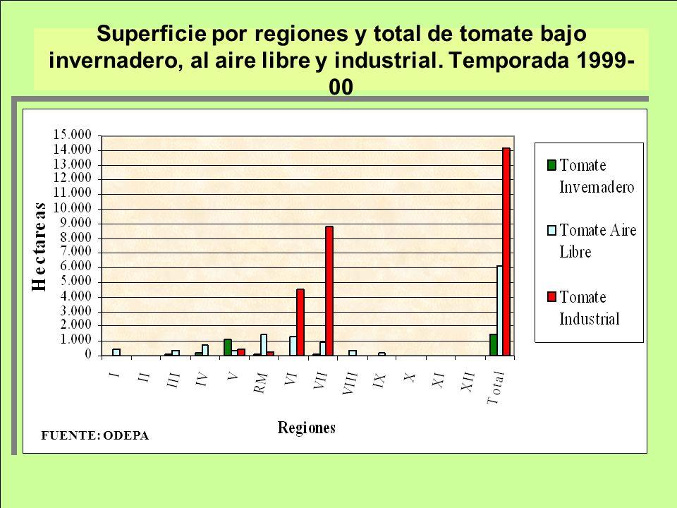 Superficie por regiones y total de tomate bajo invernadero, al aire libre y industrial. Temporada 1999- 00 FUENTE: ODEPA