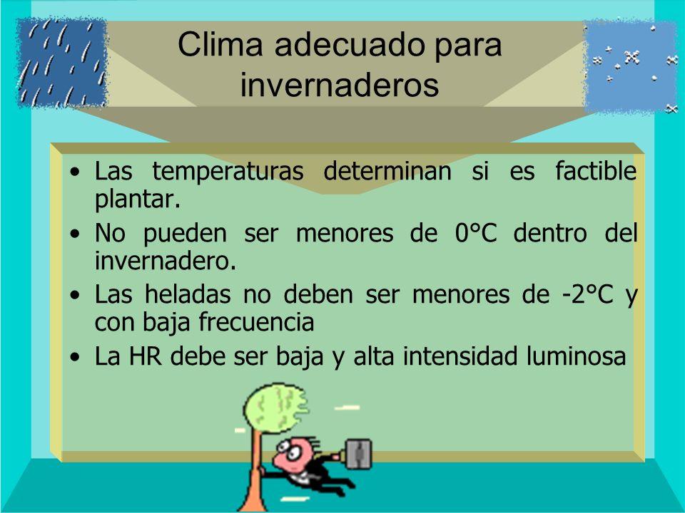 Clima adecuado para invernaderos Las temperaturas determinan si es factible plantar. No pueden ser menores de 0°C dentro del invernadero. Las heladas
