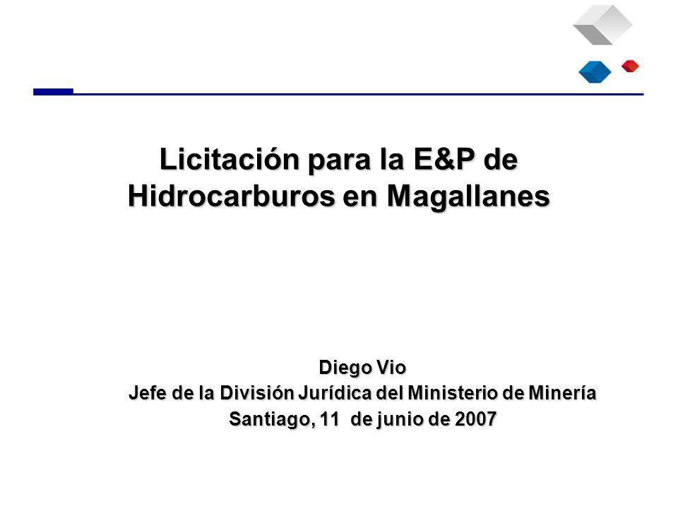Diego Vio Jefe de la División Jurídica del Ministerio de Minería Santiago, 11 de junio de 2007 Licitación para la E&P de Hidrocarburos en Magallanes