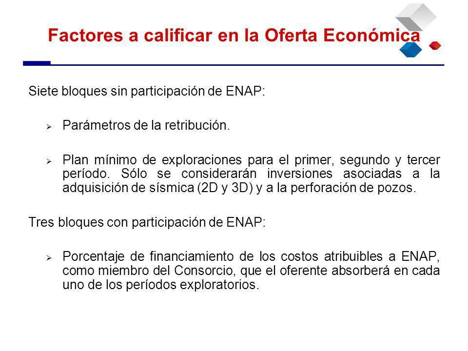 Siete bloques sin participación de ENAP: Parámetros de la retribución.