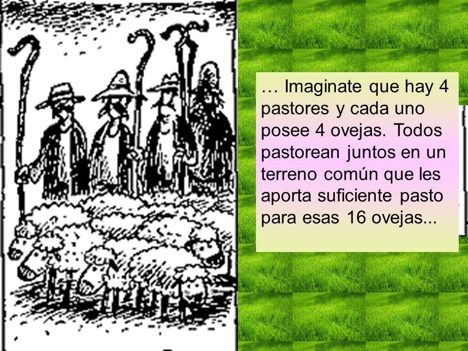 … Imaginate que hay 4 pastores y cada uno posee 4 ovejas. Todos pastorean juntos en un terreno común que les aporta suficiente pasto para esas 16 ovej