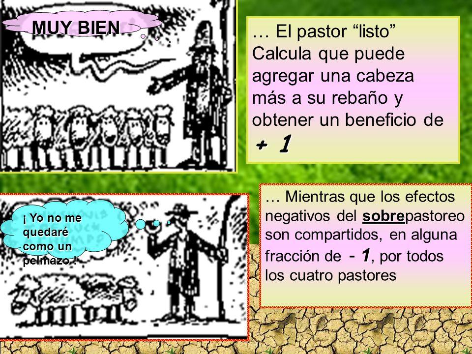 + 1 … El pastor listo Calcula que puede agregar una cabeza más a su rebaño y obtener un beneficio de + 1 ¡ Yo no me quedaré como un pelmazo ! MUY BIEN