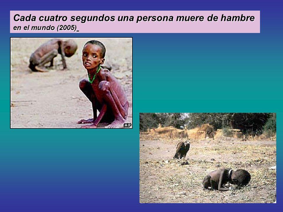 Cada cuatro segundos una persona muere de hambre Cada cuatro segundos una persona muere de hambre en el mundo (2005) en el mundo (2005)