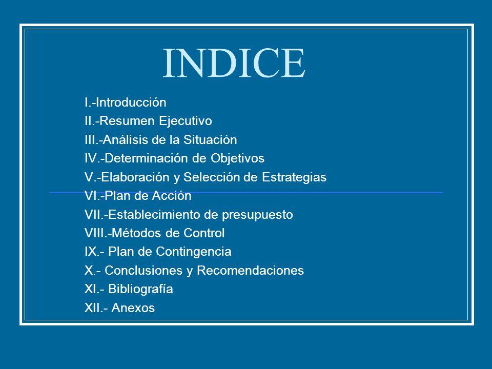 INDICE I.-Introducción II.-Resumen Ejecutivo III.-Análisis de la Situación IV.-Determinación de Objetivos V.-Elaboración y Selección de Estrategias VI