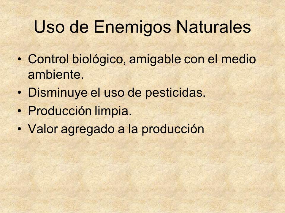 Uso de Enemigos Naturales Control biológico, amigable con el medio ambiente.
