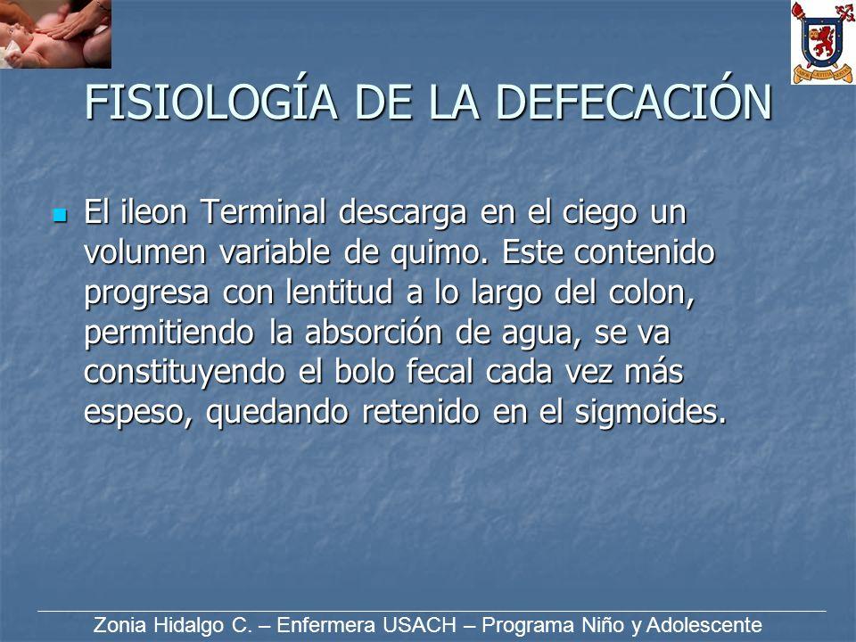 FISIOLOGÍA DE LA DEFECACIÓN El ileon Terminal descarga en el ciego un volumen variable de quimo. Este contenido progresa con lentitud a lo largo del c