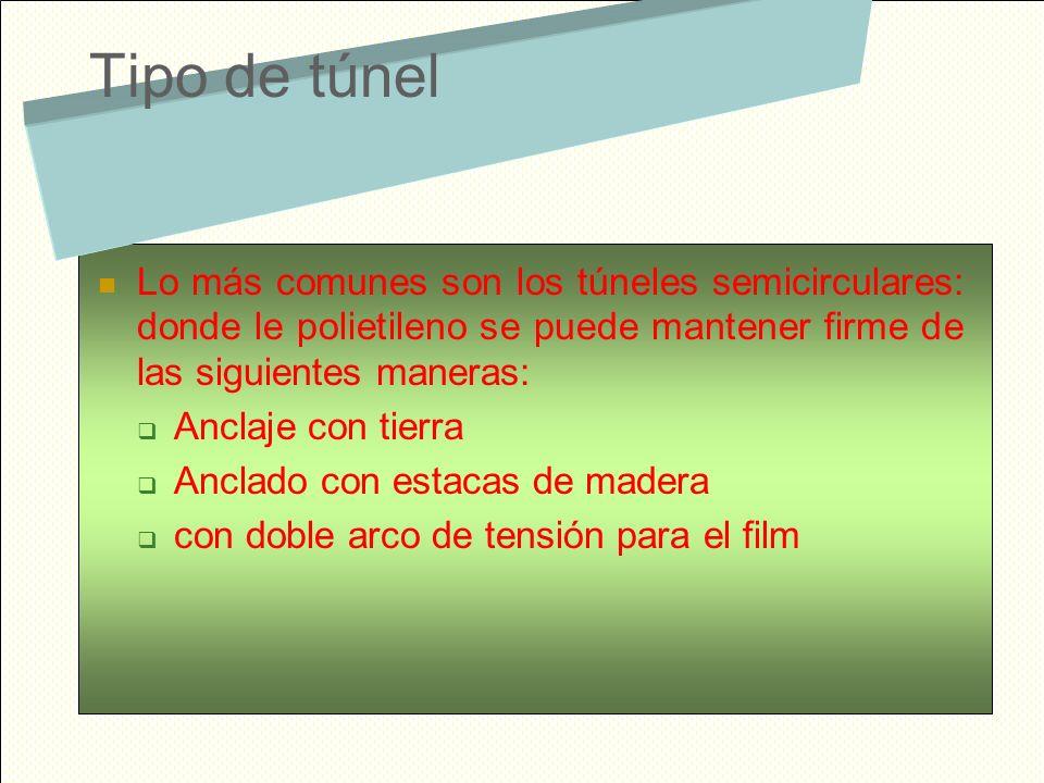 Tipo de túnel Lo más comunes son los túneles semicirculares: donde le polietileno se puede mantener firme de las siguientes maneras: Anclaje con tierr