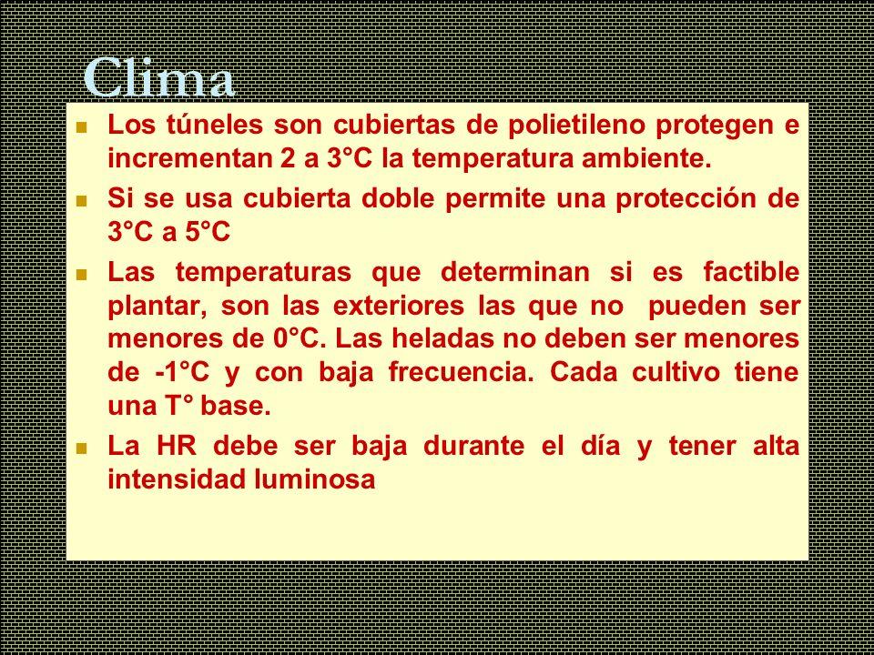Clima Los túneles son cubiertas de polietileno protegen e incrementan 2 a 3°C la temperatura ambiente. Si se usa cubierta doble permite una protección