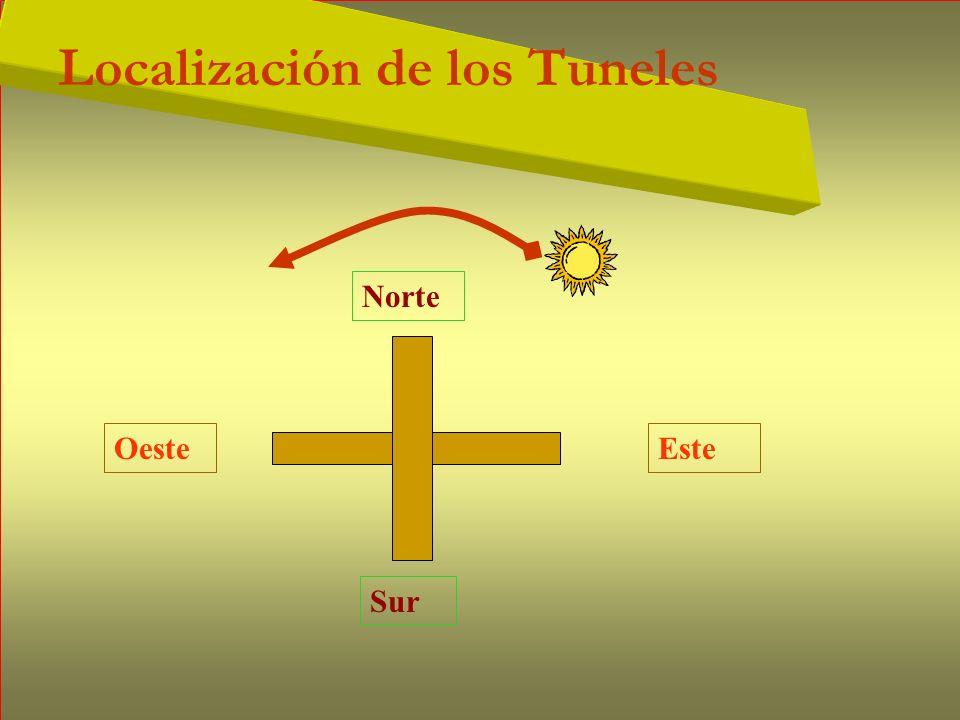 Localización de los Tuneles EsteOeste Norte Sur