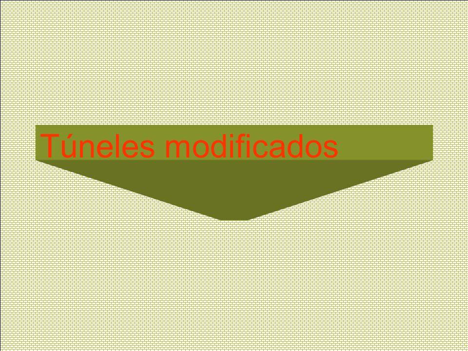 Túneles modificados