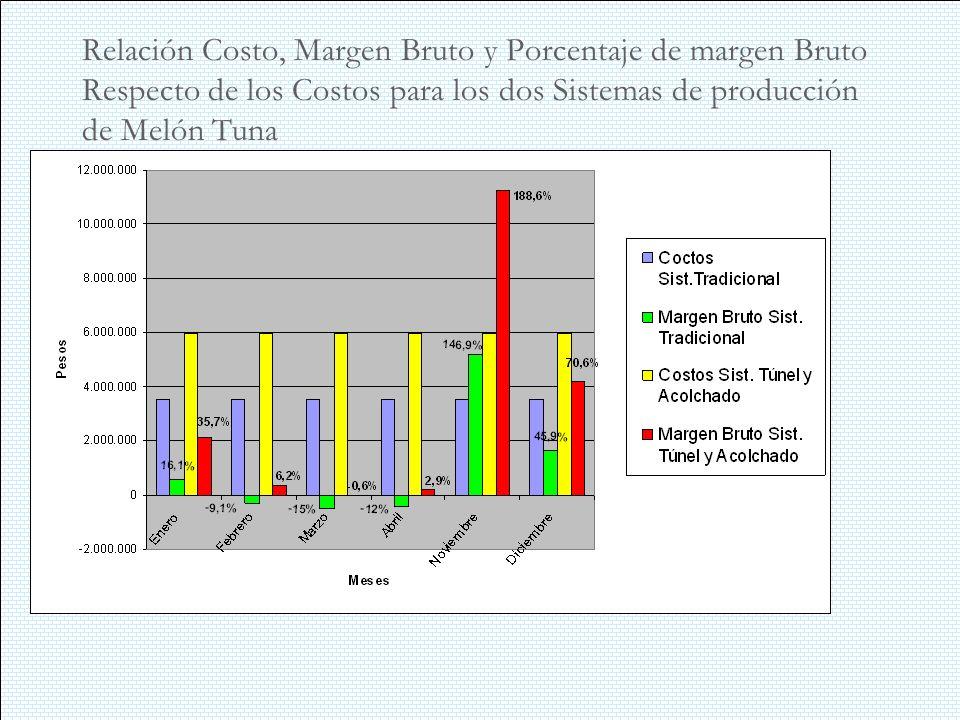 Relación Costo, Margen Bruto y Porcentaje de margen Bruto Respecto de los Costos para los dos Sistemas de producción de Melón Tuna