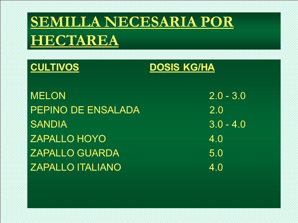 SEMILLA NECESARIA POR HECTAREA CULTIVOSDOSIS KG/HA MELON2.0 - 3.0 PEPINO DE ENSALADA 2.0 SANDIA3.0 - 4.0 ZAPALLO HOYO4.0 ZAPALLO GUARDA 5.0 ZAPALLO IT