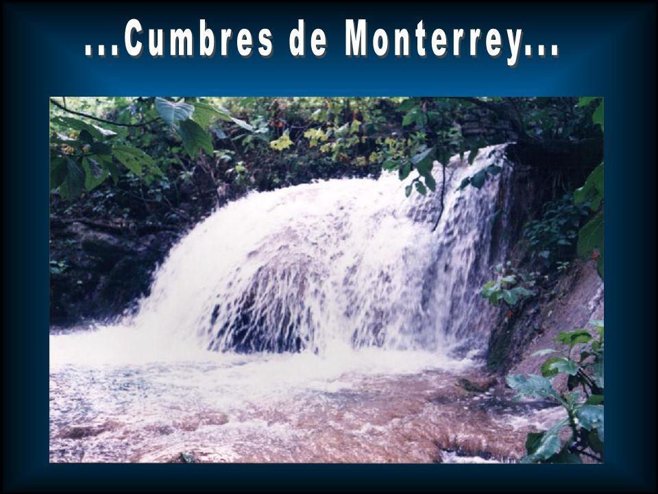 Ubicación: En los estados de Nuevo León y Coahuila Hábitat: Vegetación de Montaña Área: 2 603.06 km2 Importancia biológica: Servicios ambientales a la zona de Monterrey, incluyendo el 50% de agua al estado.