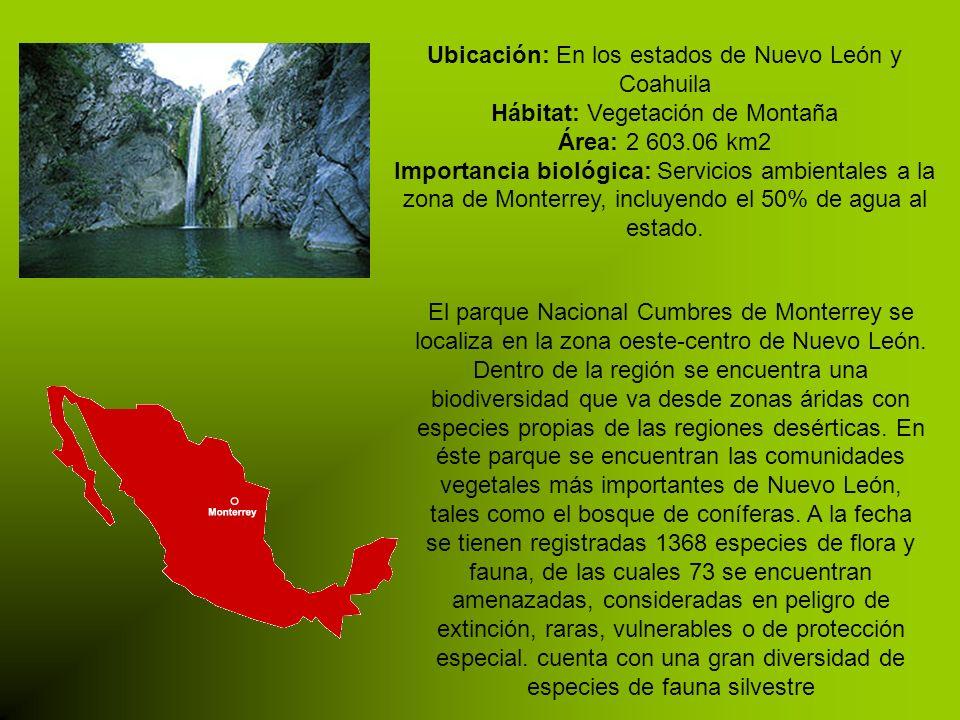 Ubicación: En los estados de Nuevo León y Coahuila Hábitat: Vegetación de Montaña Área: 2 603.06 km2 Importancia biológica: Servicios ambientales a la