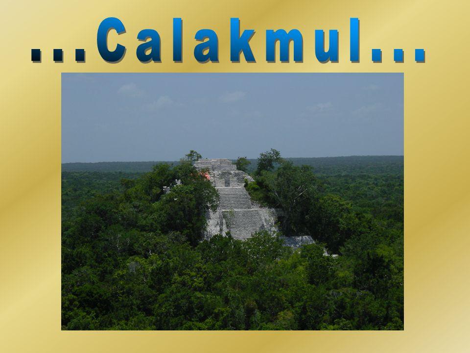 Ubicación: Al sureste de Campeche Hábitat: Selva y bosque tropical Área: 723 185 hectáreas Importancia biológica: Habitan cerca de1100 especies Se localiza al sureste del Estado de Campeche en el municipio de Calakmul, limita al este con Quintana Roo y al sur con la República de Guatemala.