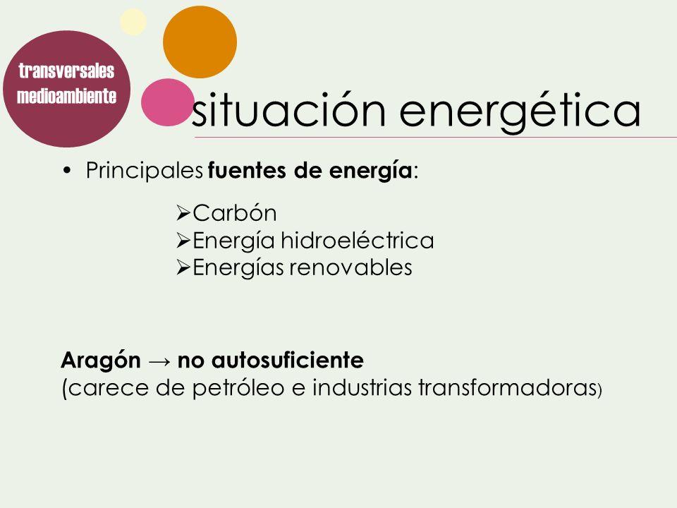 Principales fuentes de energía : Aragón no autosuficiente (carece de petróleo e industrias transformadoras ) transversales medioambiente Carbón Energí
