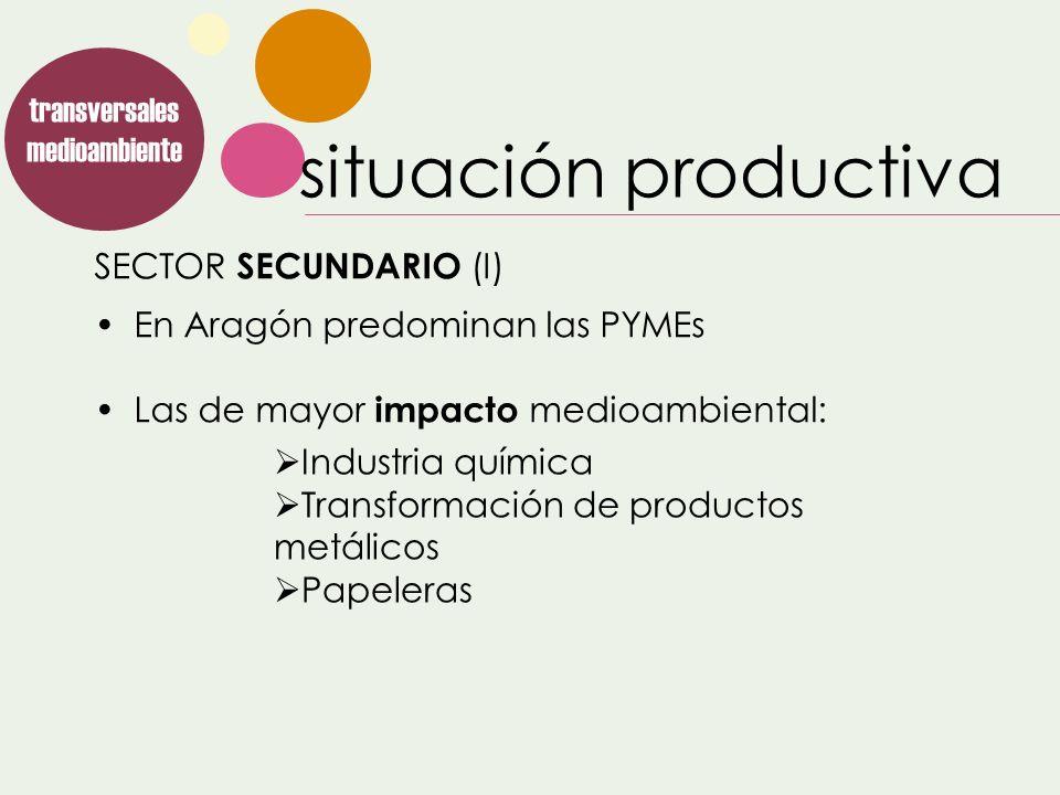 SECTOR SECUNDARIO (I) transversales medioambiente En Aragón predominan las PYMEs Las de mayor impacto medioambiental: Industria química Transformación