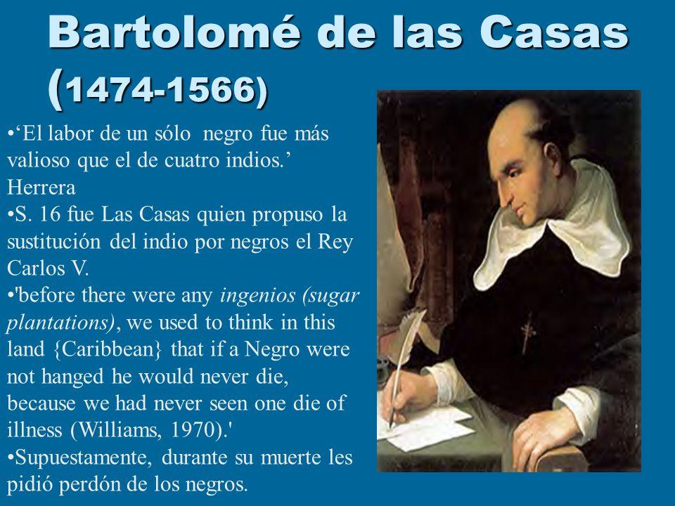 Bartolomé de las Casas ( 1474-1566) El labor de un sólo negro fue más valioso que el de cuatro indios. Herrera S. 16 fue Las Casas quien propuso la su