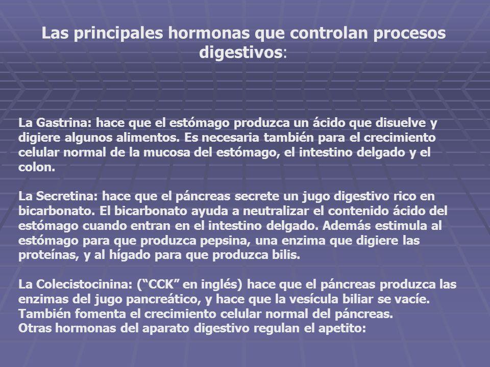 Las principales hormonas que controlan procesos digestivos: La Gastrina: hace que el estómago produzca un ácido que disuelve y digiere algunos aliment