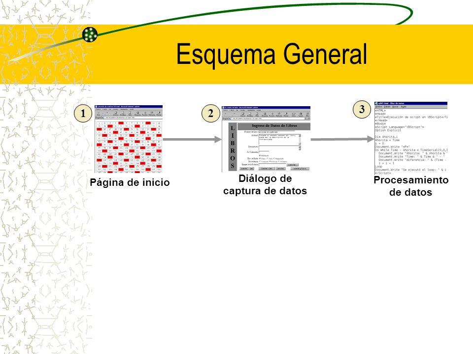 Esquema General Página de inicio Diálogo de captura de datos Procesamiento de datos 12 3