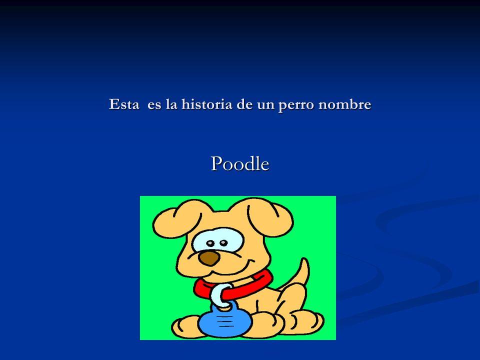 Esta es la historia de un perro nombre Poodle
