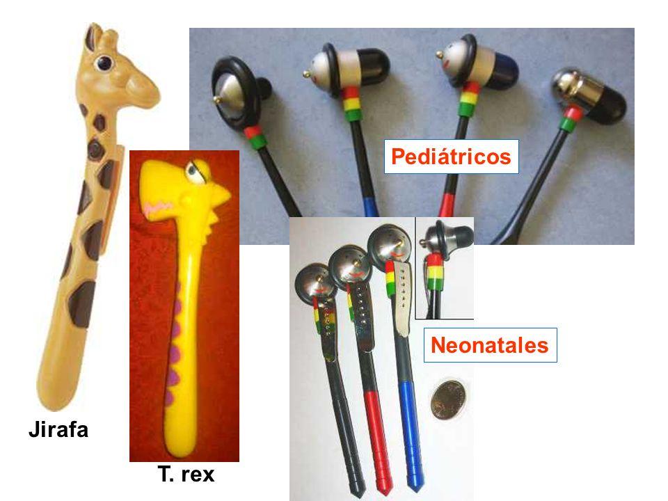Jirafa Pediátricos Neonatales T. rex