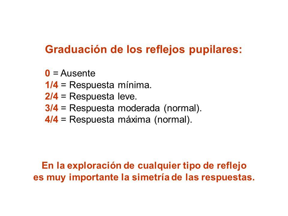 Graduación de los reflejos pupilares: 0 = Ausente 1/4 = Respuesta mínima. 2/4 = Respuesta leve. 3/4 = Respuesta moderada (normal). 4/4 = Respuesta máx