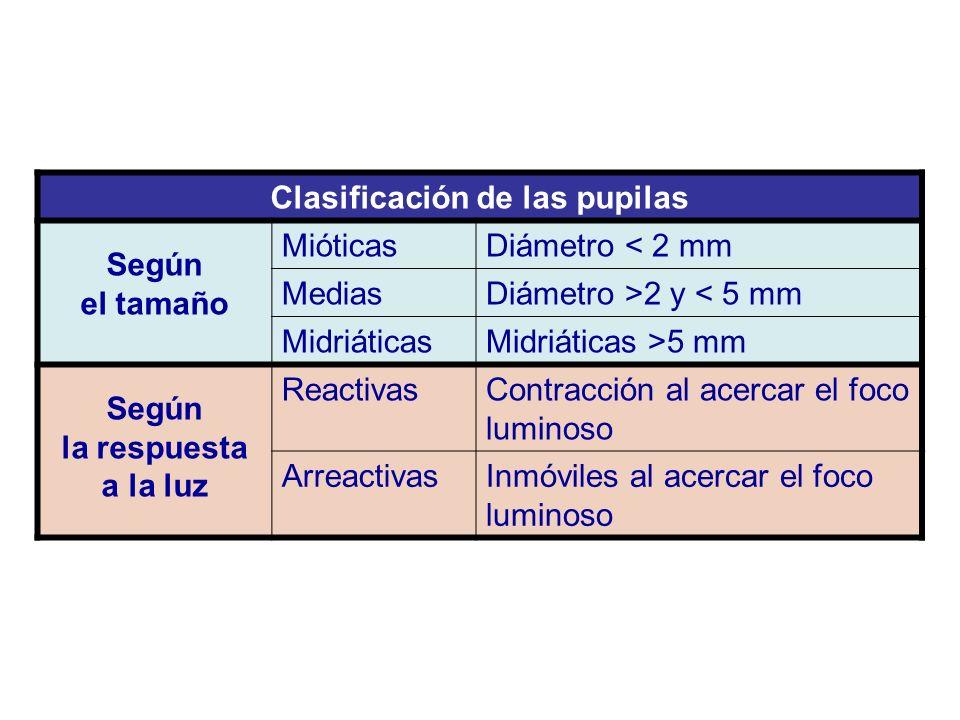 Clasificación de las pupilas Según el tamaño MióticasDiámetro < 2 mm MediasDiámetro >2 y < 5 mm MidriáticasMidriáticas >5 mm Según la respuesta a la l