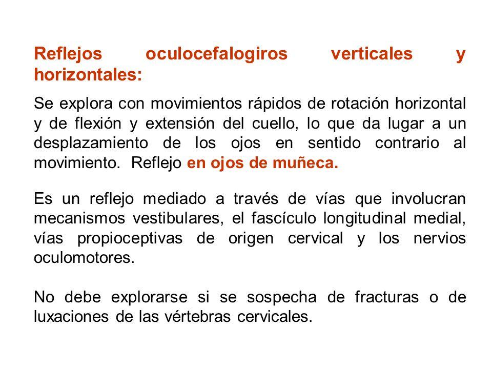 Reflejos oculocefalogiros verticales y horizontales: Se explora con movimientos rápidos de rotación horizontal y de flexión y extensión del cuello, lo