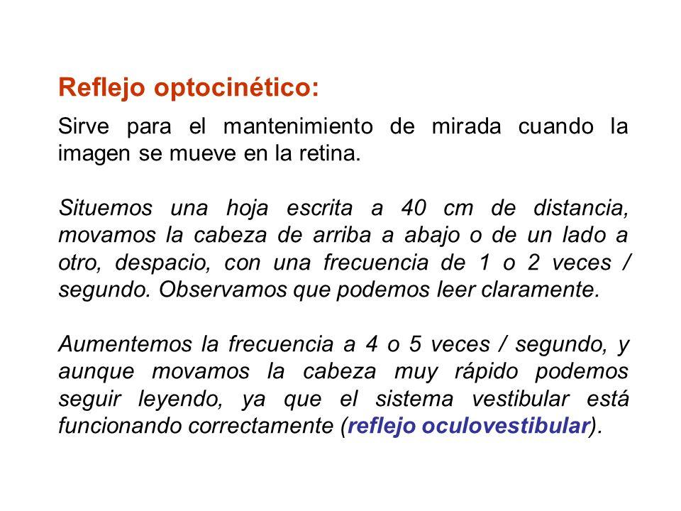 Reflejo optocinético: Sirve para el mantenimiento de mirada cuando la imagen se mueve en la retina. Situemos una hoja escrita a 40 cm de distancia, mo