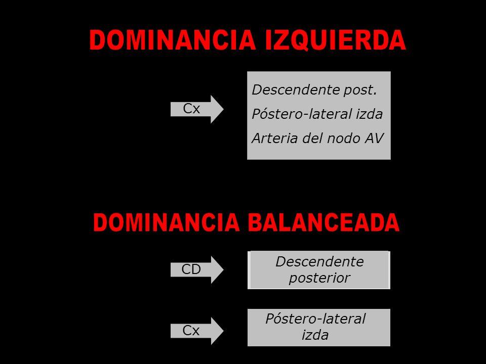 Cx Descendente post. Póstero-lateral izda Arteria del nodo AV CD Descendente posterior Cx Póstero-lateral izda