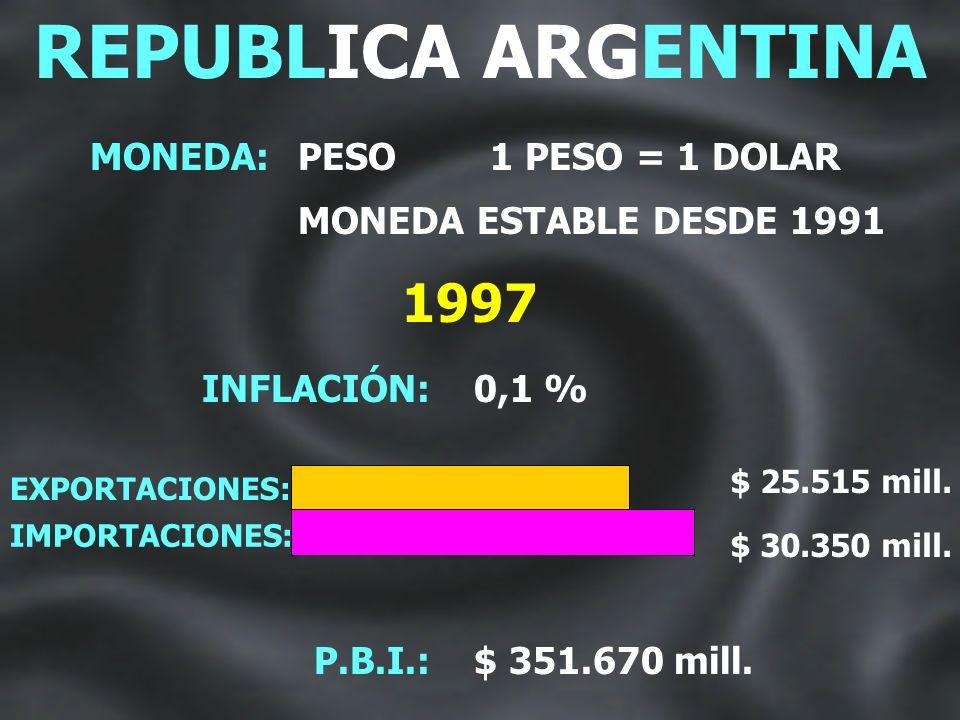 DR. CARLOS SAUL MENEM PRESIDENTE DE LA NACION REPUBLICA ARGENTINA