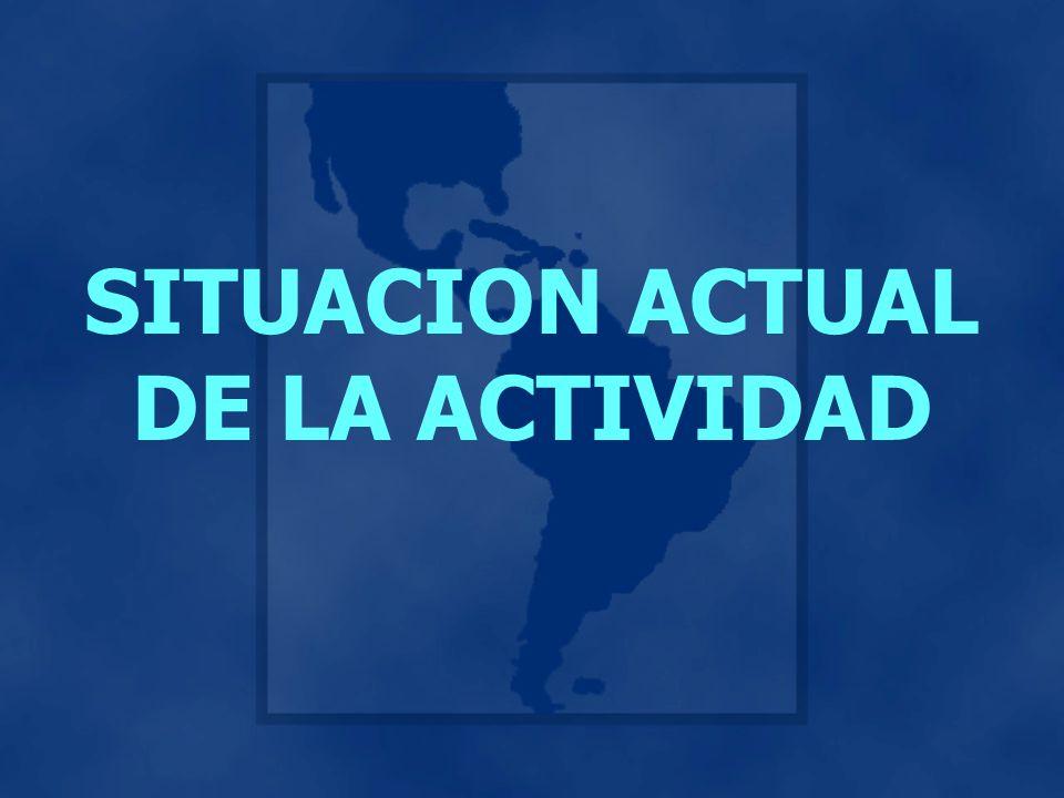 SITUACION ACTUAL DE LA ACTIVIDAD