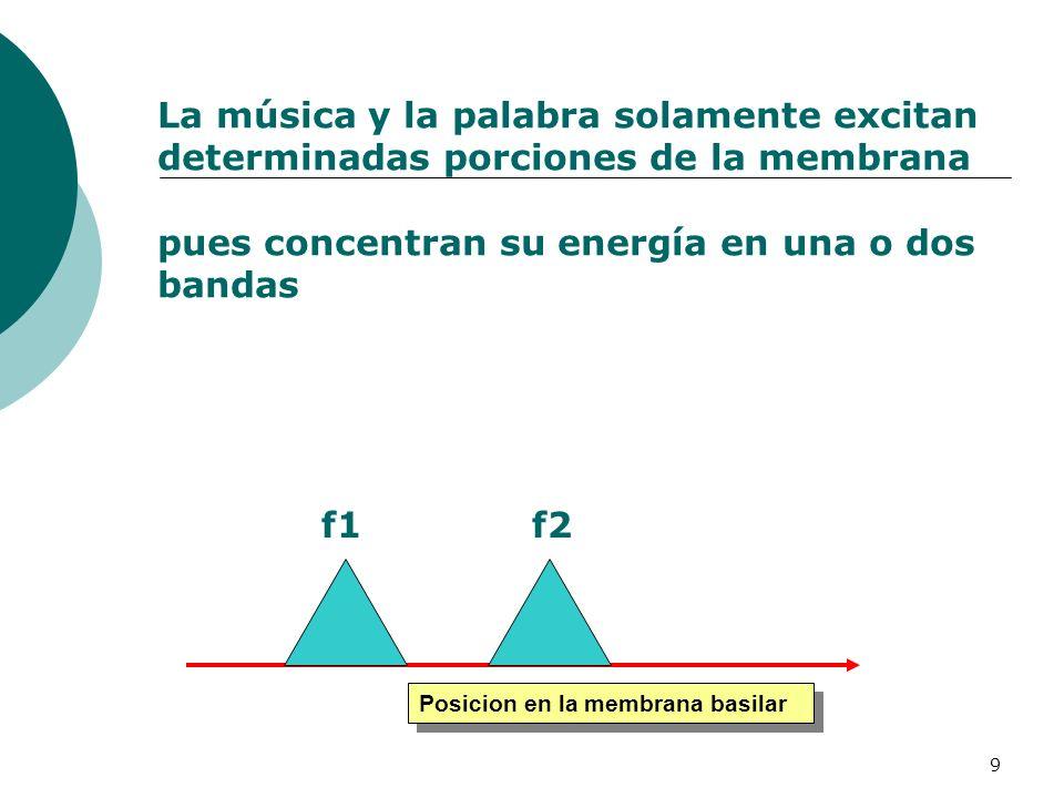 9 La música y la palabra solamente excitan determinadas porciones de la membrana pues concentran su energía en una o dos bandas Posicion en la membran