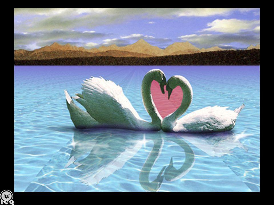 Un beso es la consagración de dos almas ávidas de expresar en forma deducible lo que interiormente viven.