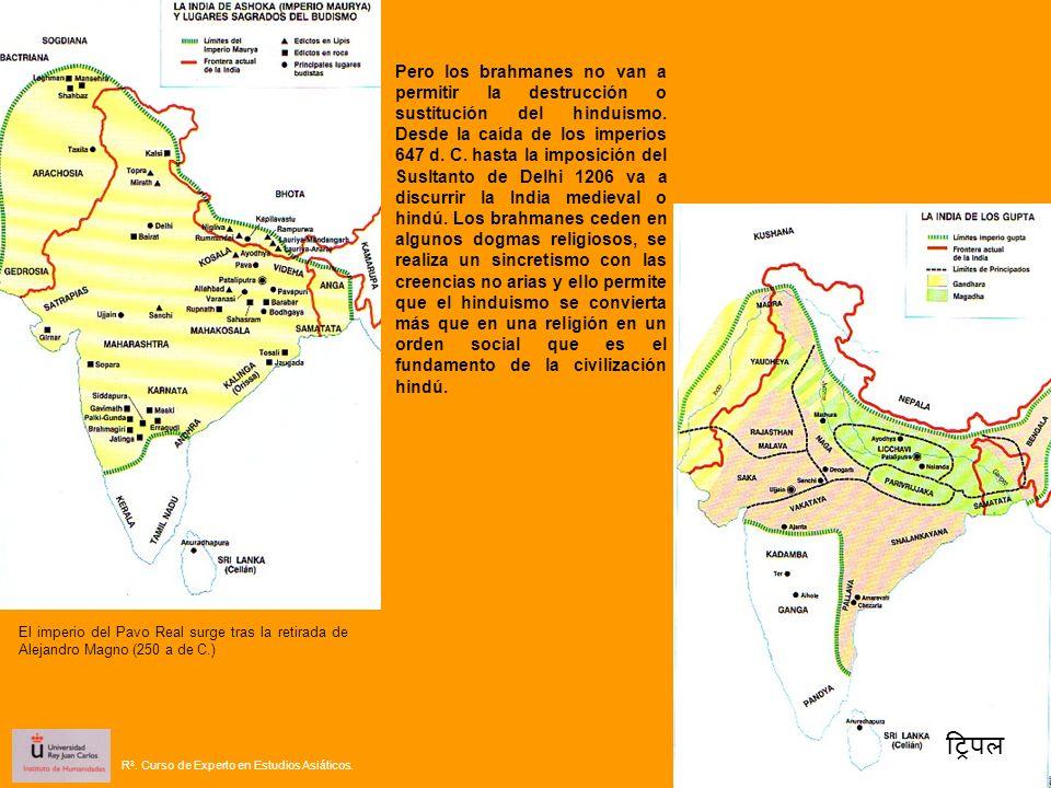 El imperio del Pavo Real surge tras la retirada de Alejandro Magno (250 a de C.) Pero los brahmanes no van a permitir la destrucción o sustitución del