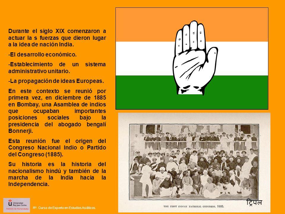 Durante el siglo XIX comenzaron a actuar la s fuerzas que dieron lugar a la idea de nación India. -El desarrollo económico. -Establecimiento de un sis